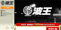 波王(NAMI-O) 回収率 検証